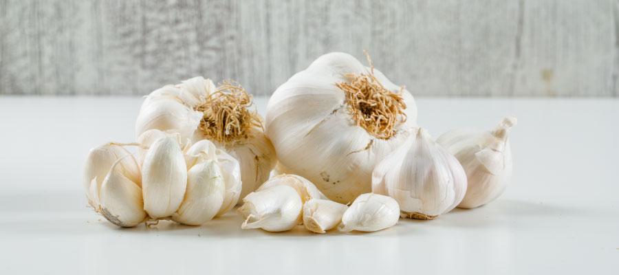 garlic for losing fats fast